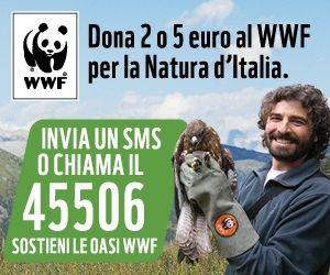 GRAN FINALE CAMPAGNA OASI WWF 2013! http://www.periodicodaily.com/2013/05/25/gran-finale-campagna-oasi-wwf-2013/