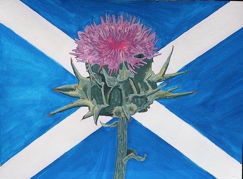 St Andrew S Cross And Thistle Thistles Art Flag Of Scotland St Andrews Cross