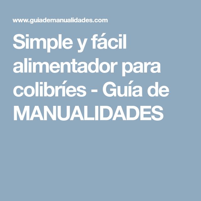 Simple y fácil alimentador para colibríes | Colibri, Guia de ...