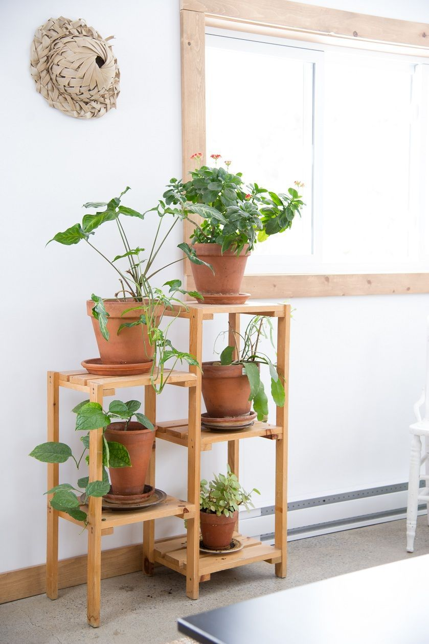 20 DIY Plant Stands That Let You Discover Your Creative thinking #diyplantstand