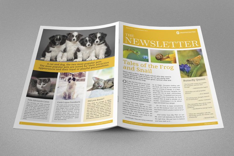 Newsletter Indesign Template 6 Newsletters Templates
