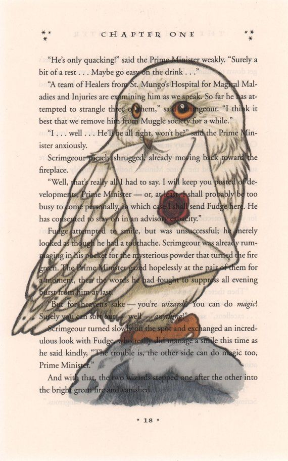 graphic regarding Printable Harry Potter Book Pages named Hedwig Artwork Print, Harry Potter Artwork, Harry Potter Guide Print