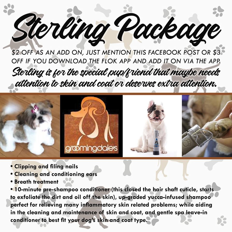 Schedule Your Appointment Today Pet Grooming Pets Animals