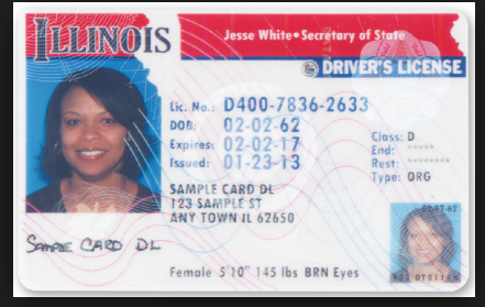 Pin By Phil Jaros On Driver Licence Drivers License Passport