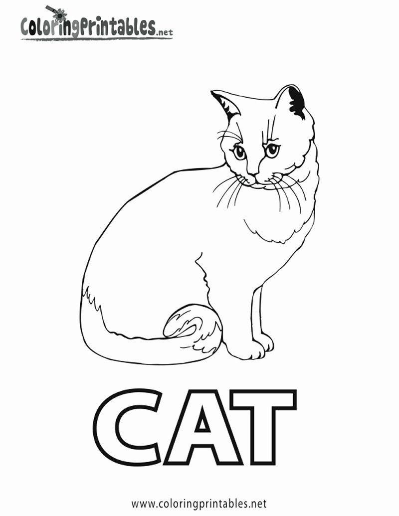 Siamese Cat Coloring Page Inspirational Spell Cat Coloring Page Printable Cat Cat Coloring Page Animal Coloring Pages Coloring Pages Inspirational