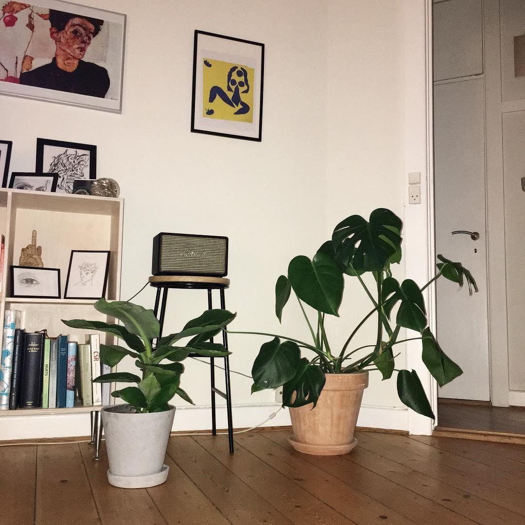 Photo of 15+ Beauteous Elegant Shabby Chic Living Room Ideas