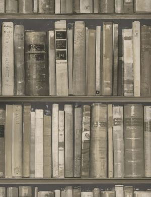 Book Effect Wallpaper Stone Wallpaper Home Peter Silk