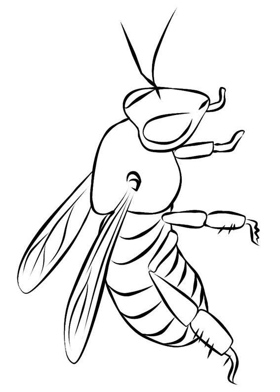 30 disegni di api da colorare disegni api e colori for Immagini da colorare aristogatti