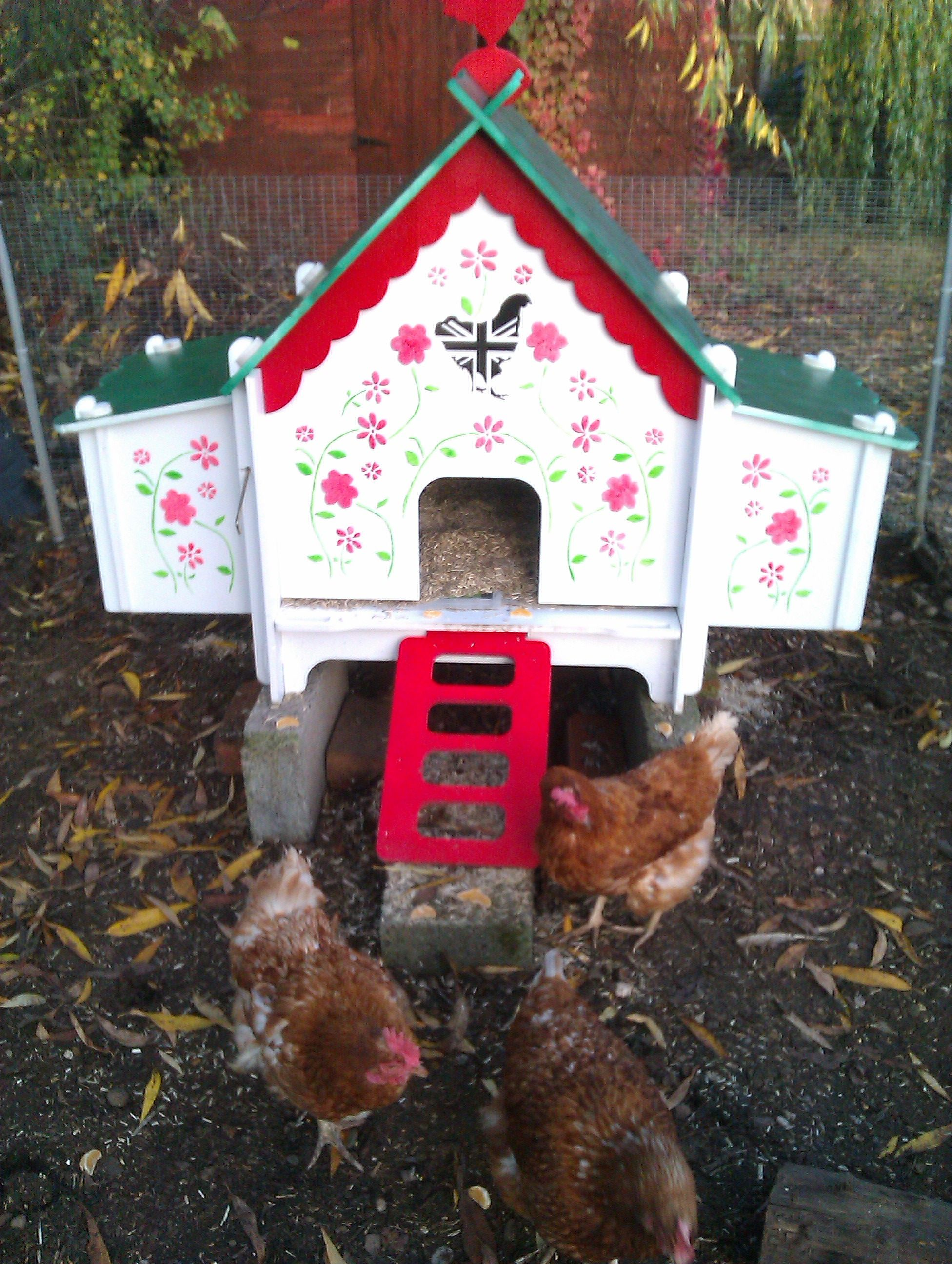 Love The Doodlehouse Chicken Tractors Coop Chickens
