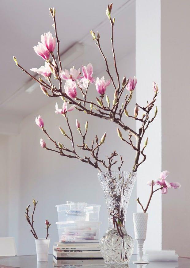In unserem WESTWING-Magazin lesen Sie alles über unsere liebsten Blumen und Blüten - hier geht es zum Blütenwunder!