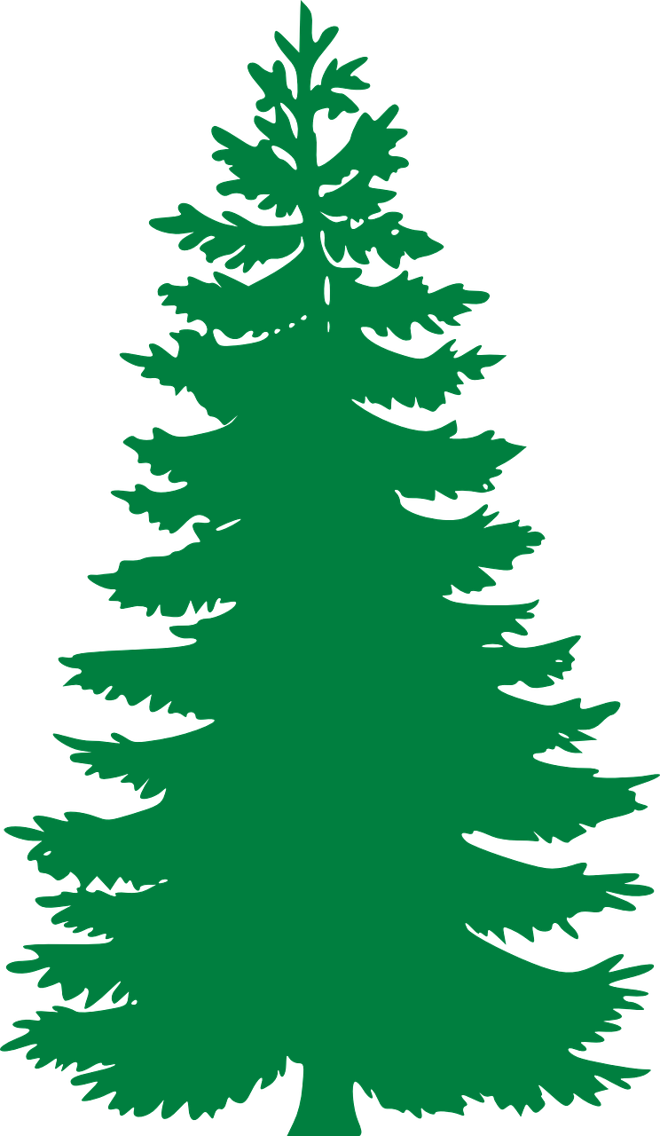 Free Image on Pixabay - Fir, Evergreen, Trees, Silhouette   Juegos ...