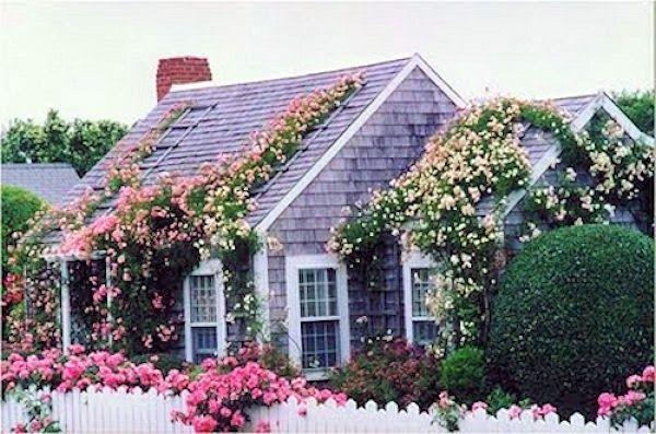 Fachadas de casas com jardim, ao estilo Country Cottage, casas encantadoras