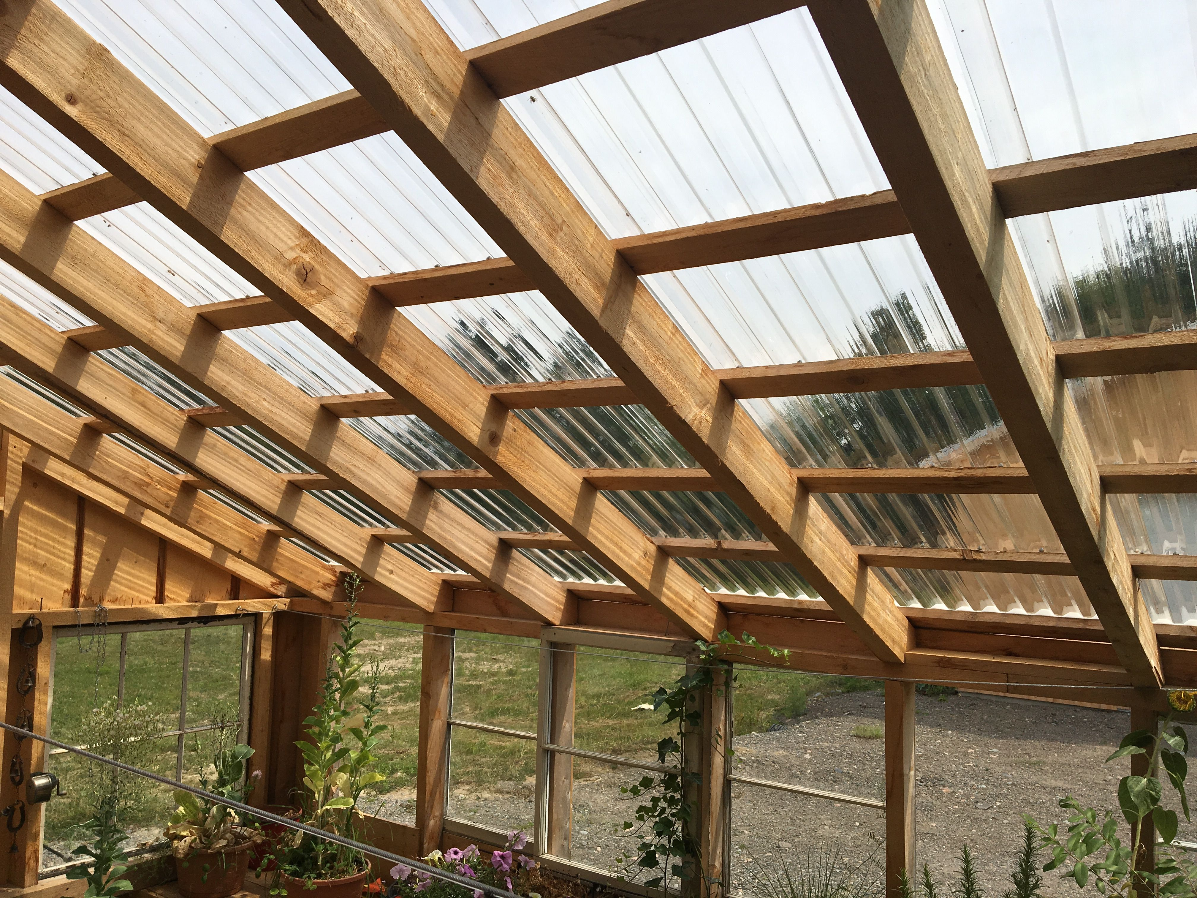 Clear Corrugated Roof Lets The Sun Shine In Pergola Pergola Plans Pergola With Roof