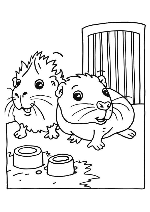 Top 25 Guinea Pig Coloring Pages For Your Toddlers   For Piggy ...