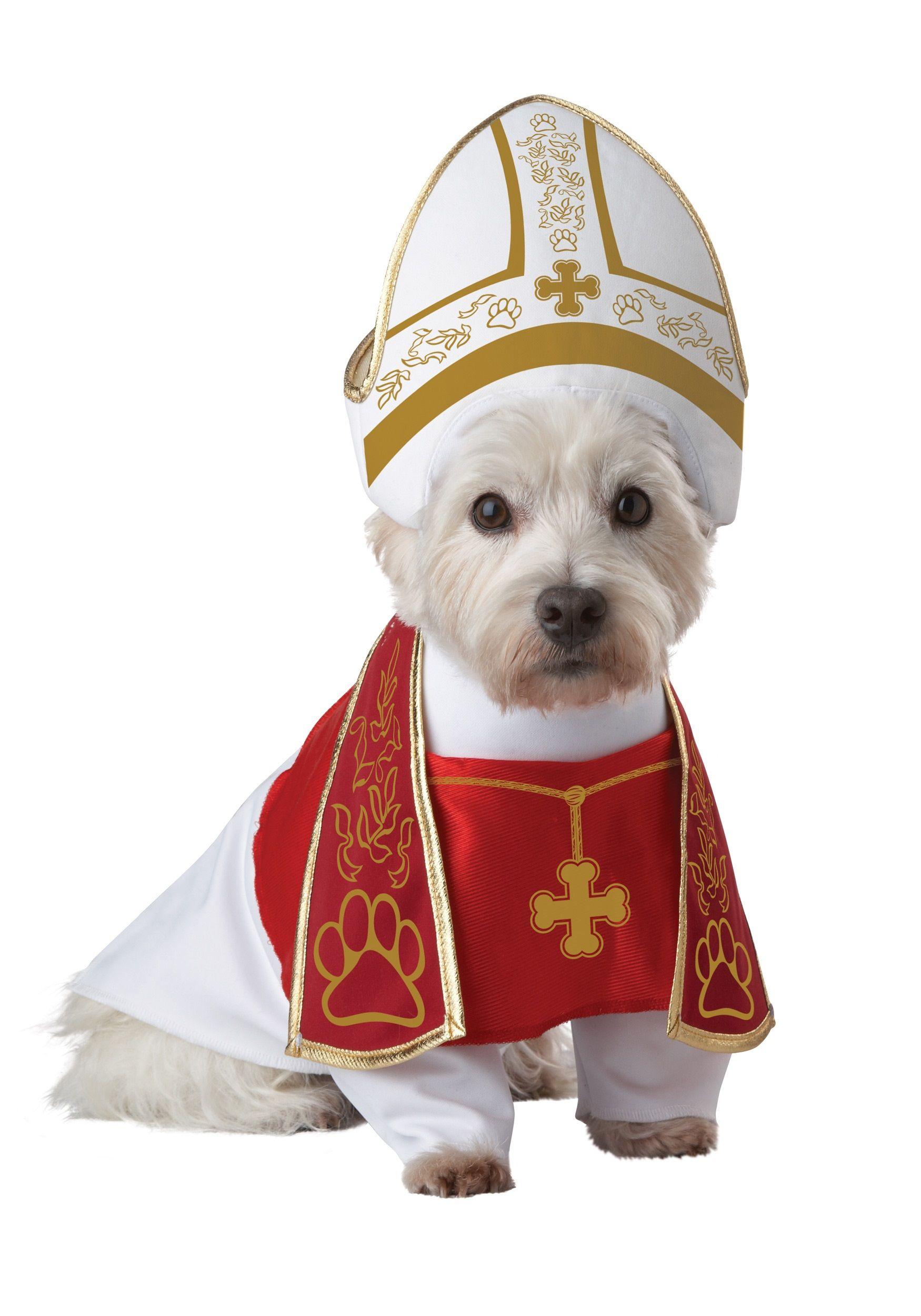 Pope Westie Hond Halloween Honden Schattigste Dieren