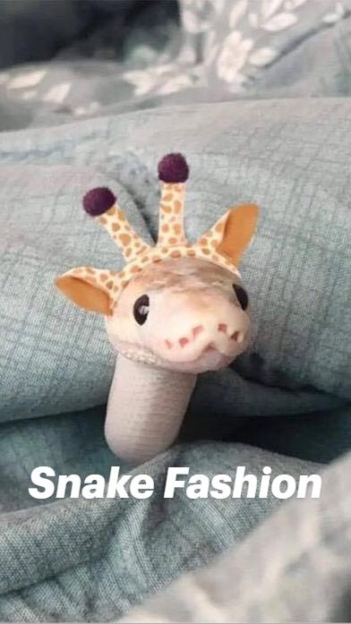 Snake Fashion