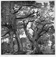 incisioni alberi - Cerca con Google