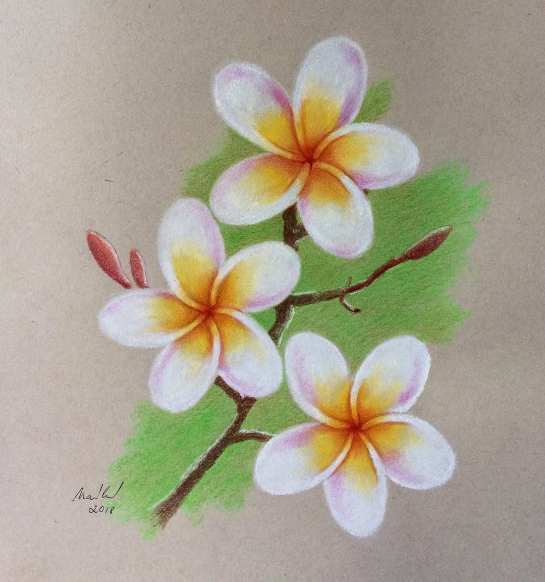 Pin By Fefe Scimone On Disegni Flower Drawing Flower Art