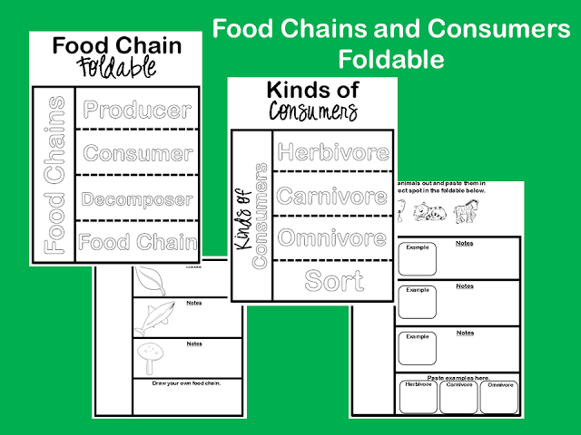 FREE from Ginger Snaps: Food Chain and Consumers Foldable
