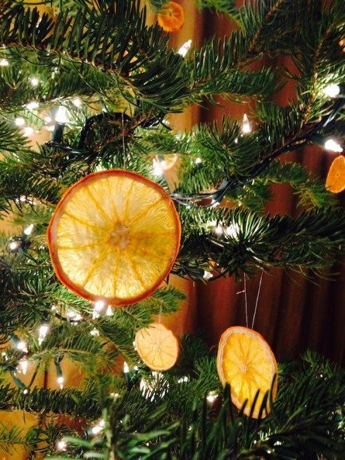 10 Ideas To Make Your Own Edible Ornaments Edible Christmas Tree