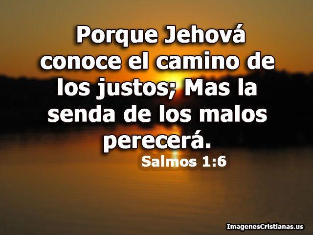 Salmos 1 6 Porque Jehova Conoce El Camino De Los Justos Salmos