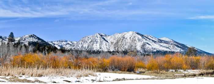 Taylor Creek, Snow, Trees, Brush, Mountains