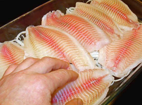 Что можно приготовить из филе рыбы
