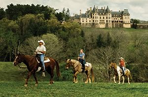 Things To Do At Biltmore | Biltmore | horse RANCH in 2019