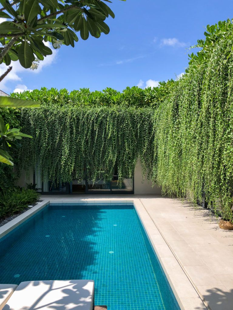 Photo of Hanging Gardens Create A Private Oasis For These Modern Villas