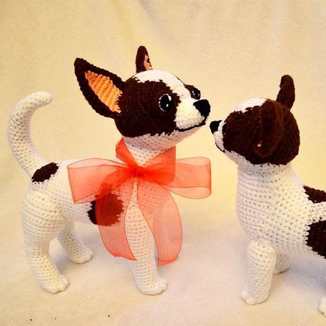 Crocheted Chihuahuas #chihuahua #crochetchihuahua #crochetdog ...