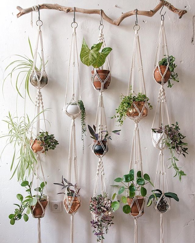 Macrame Plant Wall Branch Hanger