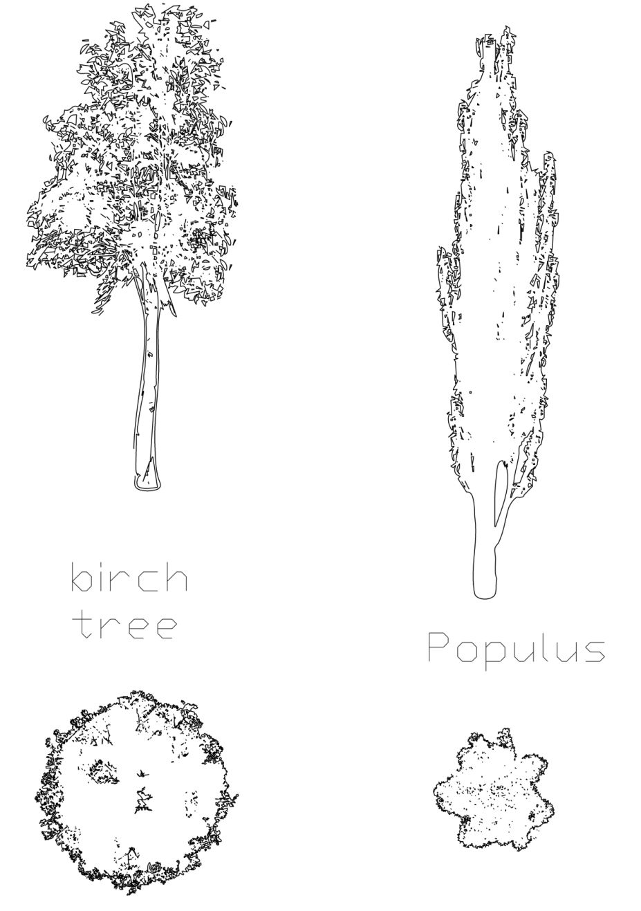 how to draw trees in plan architecture