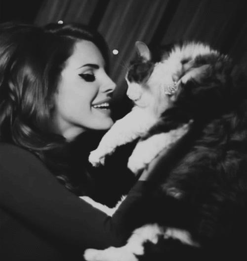 Lana x cats