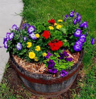 Flower pots decoration ideas