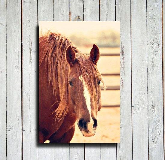 chestnut 16x20 canvas print horse decor by emeraldtownraven diy