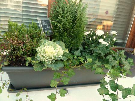 Jardini re d 39 hiver fleurs et v g tation pinterest jardini res hiver et jardins - Idee composition jardiniere exterieure ...