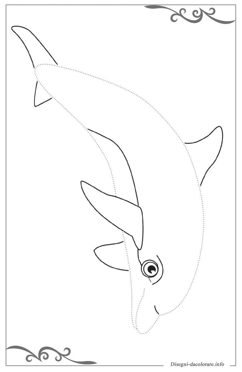 30 Sfoglia Delfini Da Stampare E Colorare Galleria Di Immagini
