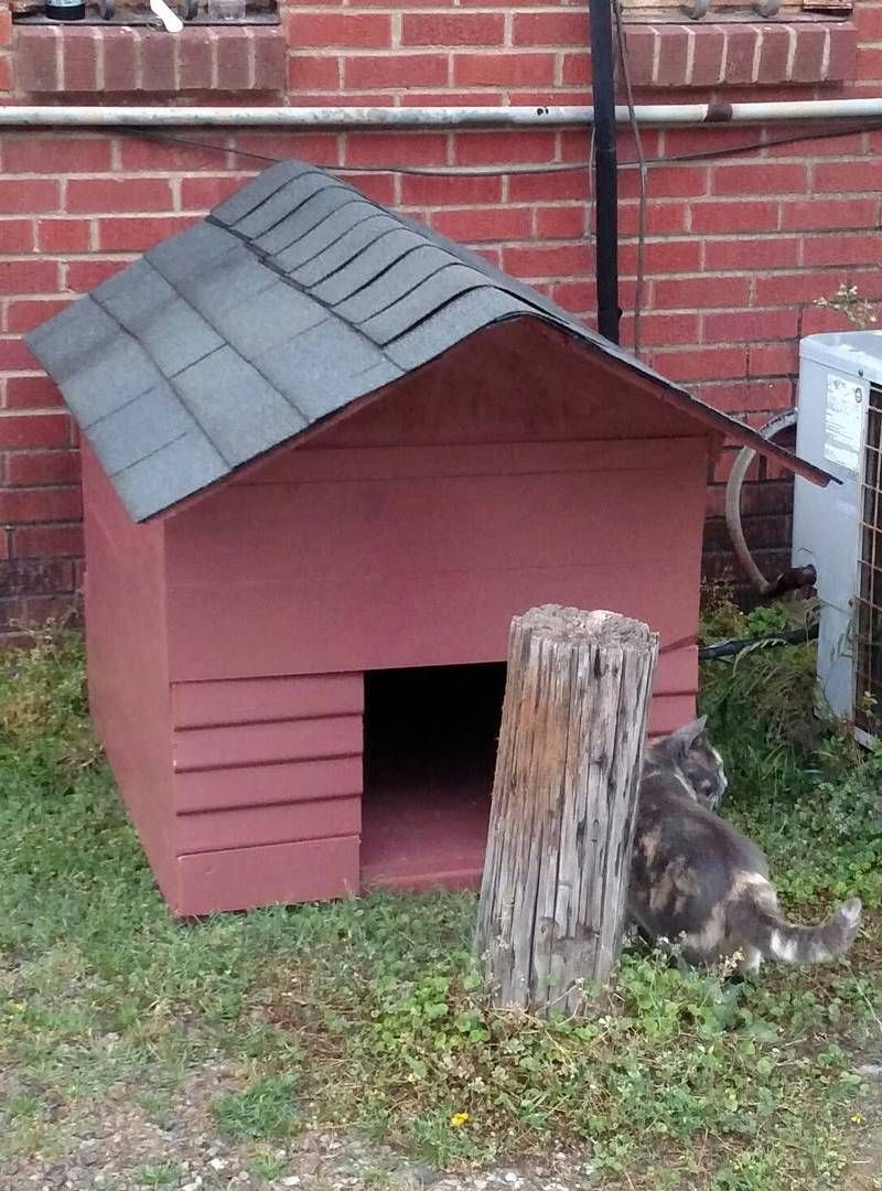 15 Diy Outdoor Cat Houses For Your Fur Babies In 2020 Outdoor Cat House Outdoor Cats Diy Outdoor