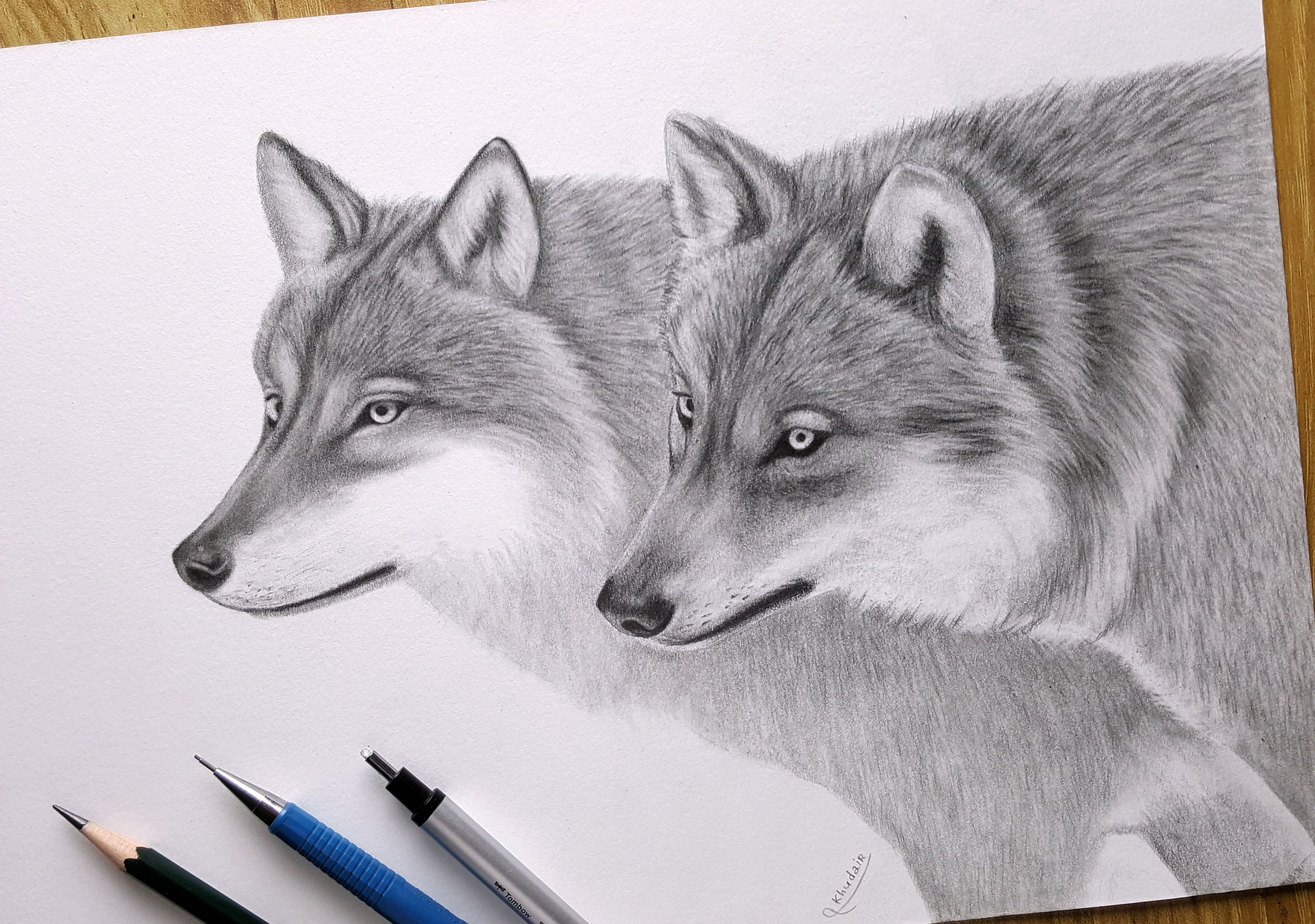 Draw A Wolf With A Pencil Drawing Art Wolf Wolf Drawing Animal Drawings Drawings
