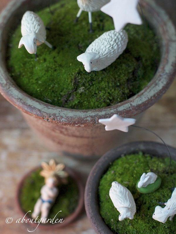 pot-presepe-aboutgarden.jpg (600×800)
