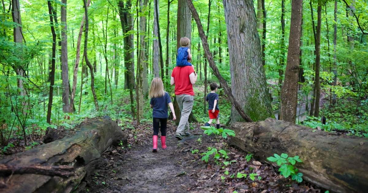 Take a hike in ohios largest playground ohio hiking