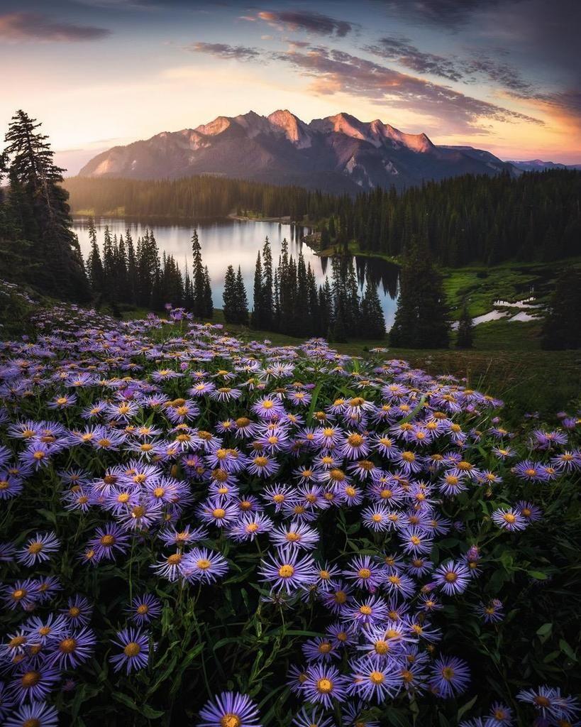 Beautiful Nature In World Interesting Facts About Nature Beautiful Pictures Pejzazhnaya Fotografiya