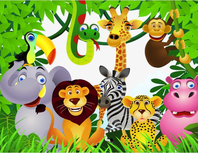 Tropical Rainforest Animals Png And Clipart Rainforest Animals Tropical Rainforest Bird Painting Acrylic