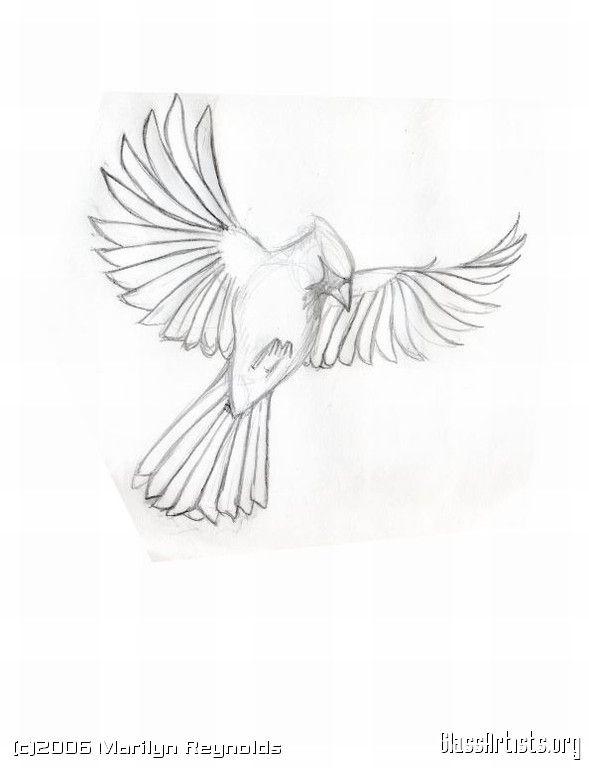 Bird Line Drawing Tattoo : Img cardnail sketch g stuff pinterest