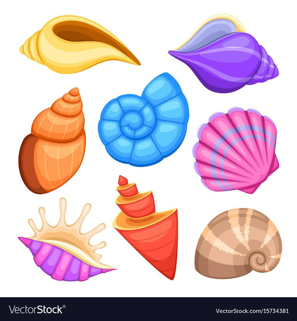 Ocean cockleshells. Cartoon sea shells vector collection ...