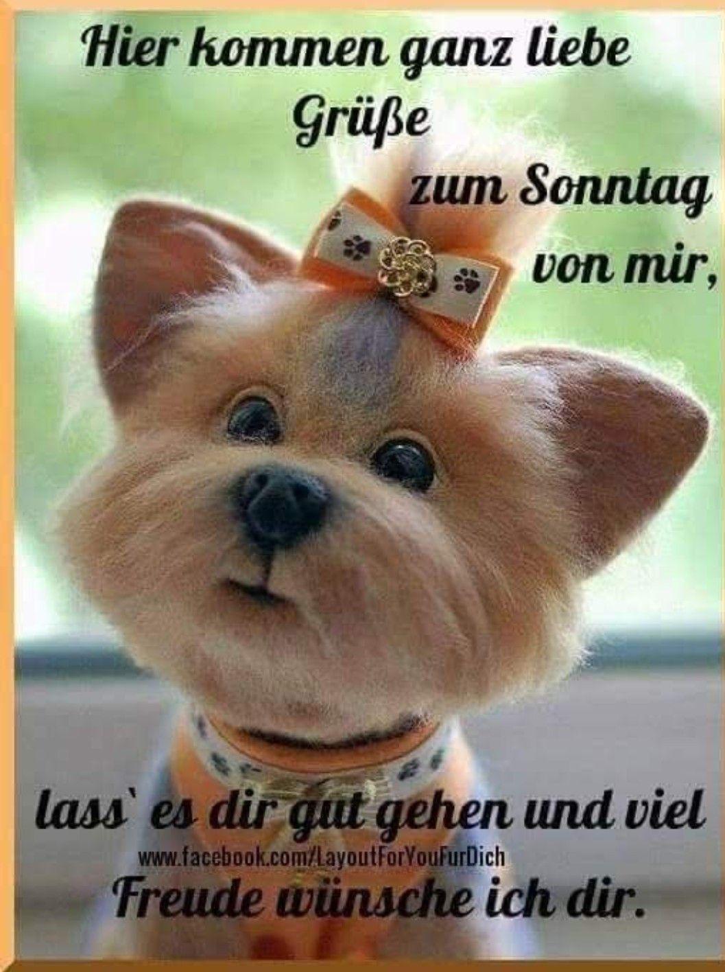 Pin Von Kerstin Schubert Auf Guten Morgen Sonntagsgrüße