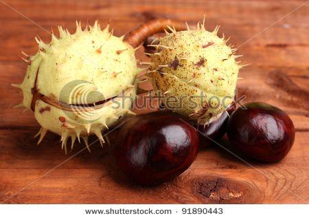 Chesnuts--reminds me of Hamilton Park on Church street....Caledonia, NY..... growing up.......