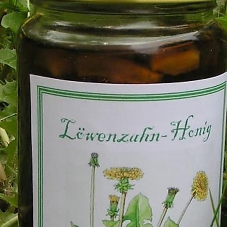 Löwenzahn-Honig