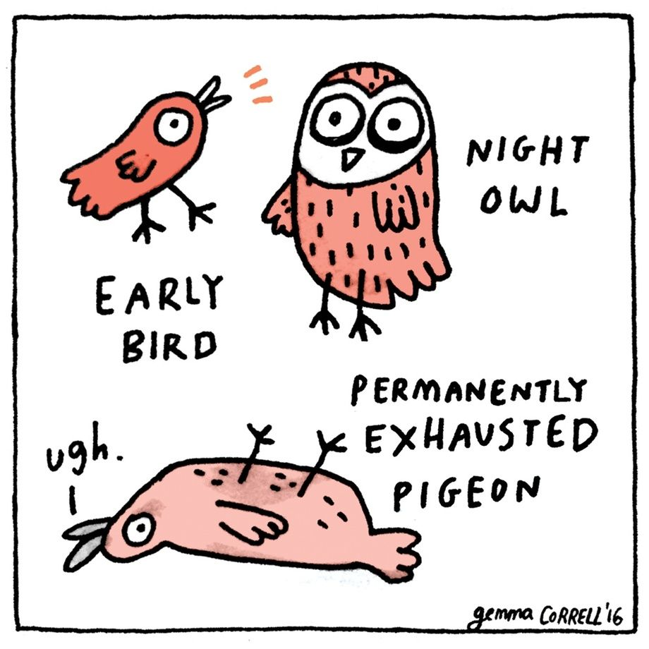 Permanently Exhausted Pigeon, an art print by gemma correll