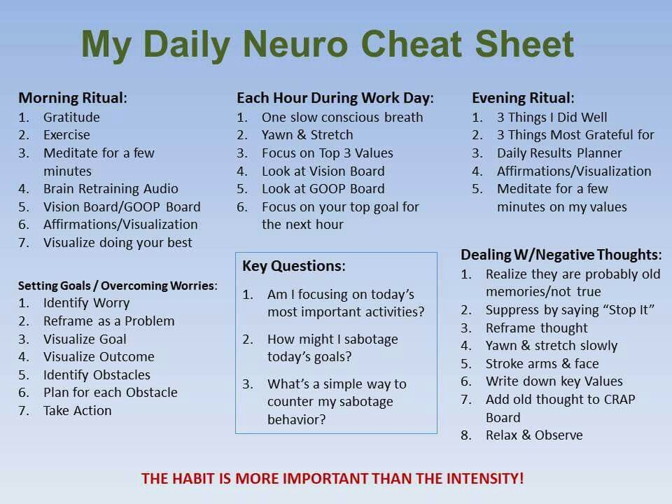 The Daily Neuro Cheat Sheet (With images) Evening